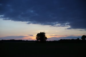 The surrounding area
